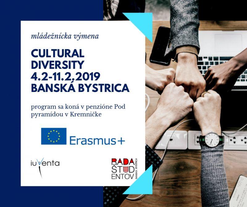 Mládežnícka výmena Cultural diversity